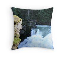 """Roaring River"" Throw Pillow"
