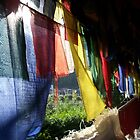Sunlight Through Prayer Flags, Tso Pema by Angie Spicer