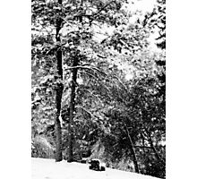 Serene - Winter Landscape Collection 2009 - Montana Photographic Print