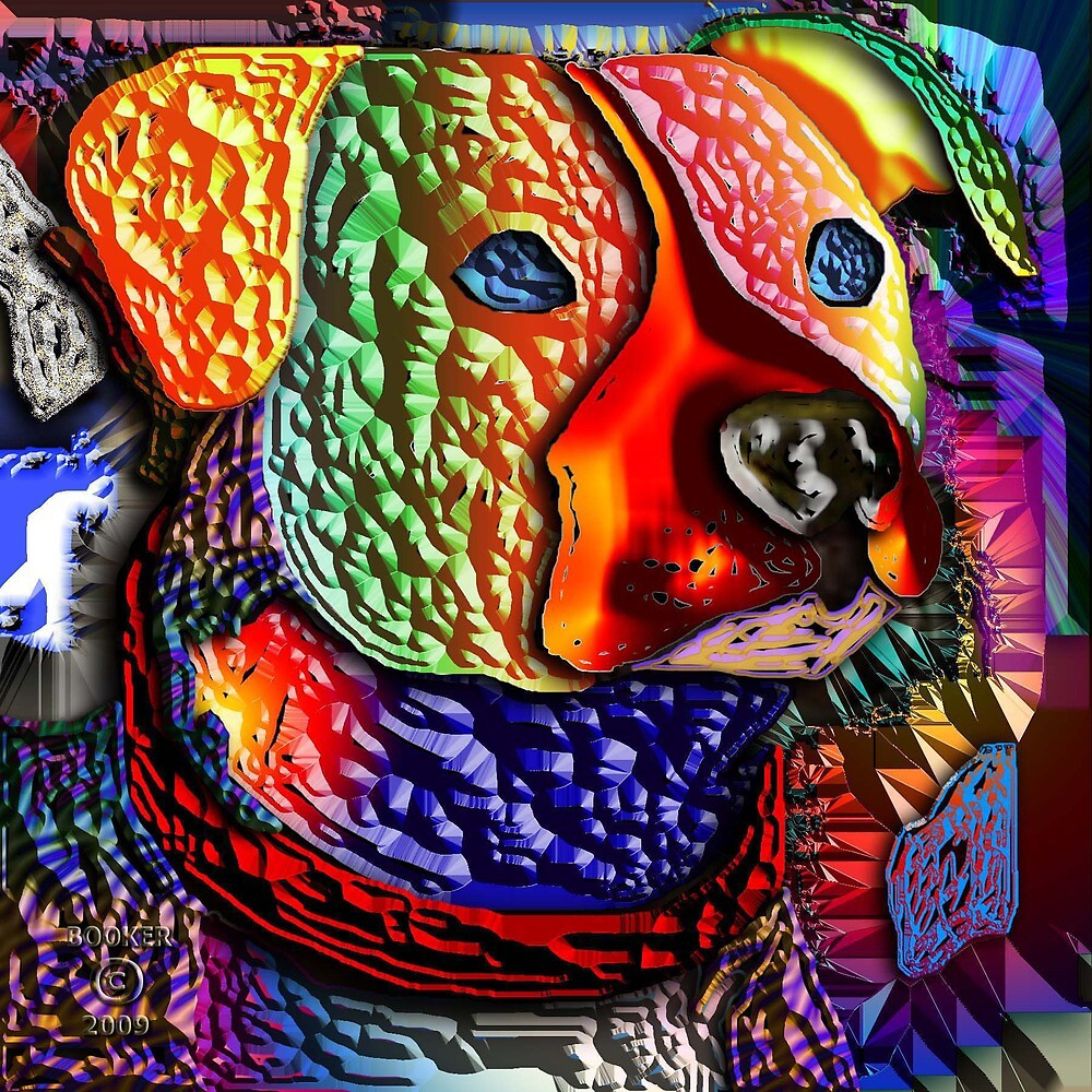 COLOUR ME DAWG by BOOKMAKER