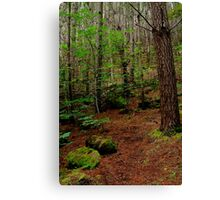 Mt Franklin,Daylesford District Canvas Print