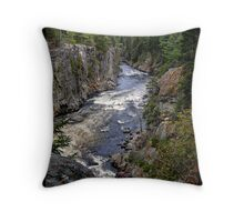 Ripogenus Gorge Throw Pillow
