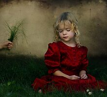 Stillness #7 by Jacqueline  Roberts