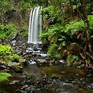 A World Away - Hopetoun Falls - Australia by Matt  Streatfeild