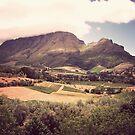 Stellenbosch Wine Country - South Africa by Matt  Streatfeild