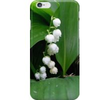 Fragrant lily of the valley iPhone Case/Skin