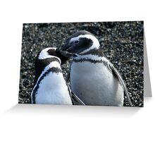 Penguin Love  Greeting Card