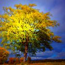 THE TREE OF LIGHT AND HOPE by leonie7