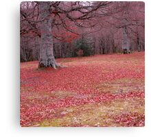 Red Paradise Canvas Print