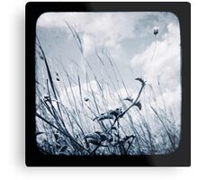 Against the Breeze Metal Print