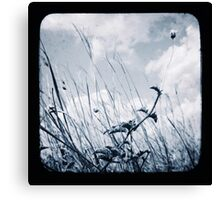 Against the Breeze Canvas Print