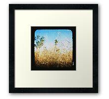 The Land that Was Framed Print