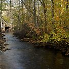 The old mill stream by Heather Thorsen