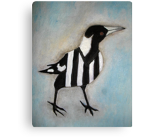 Magpie Looking Right Canvas Print