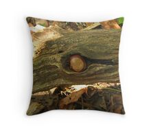 Gathering Wisdom While Balancing in the Winds Throw Pillow