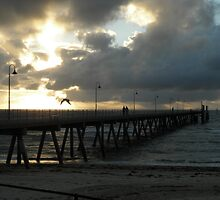 Glenelg Pier At Dusk by judygal
