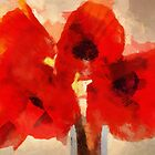 Poppies by Fay270