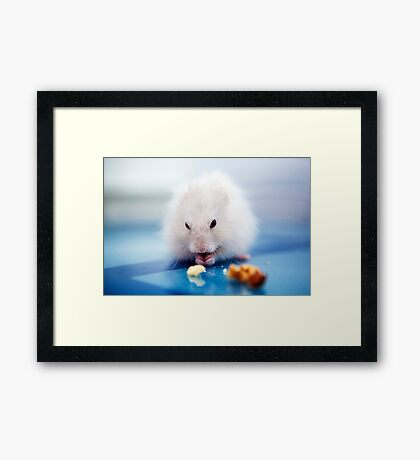 the little hamster Framed Print