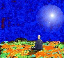 meditation in the desert by Tim  Mammel