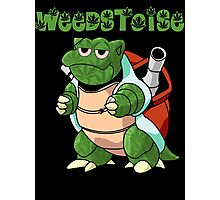 Weedstoise the weed turtle Photographic Print