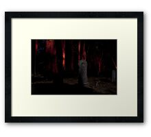 In the Dead of Night Framed Print