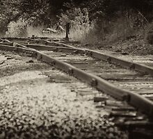 Looking Down The Tracks by Jeff Golden