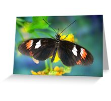 Butterfly on Blue Blur Greeting Card