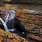 New York's Watkins Glen V by PJS15204