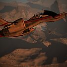 COMMAND THIS IS PATROL T31 I HAVE ARRIVED AT THE CRASH AND  I AM DOING A FLY BY NOW. by Michael Beers