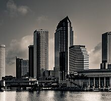 City of Tampa Skyline HDR Duotone Experience by MKWhite