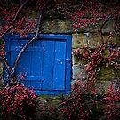 The Blue Door by geoff curtis