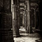 Columns by David Robinson