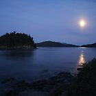 Georgeson Island in the moonlight by TerrillWelch