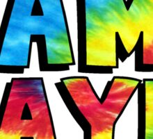 Camp Wayne Rainbow Tie Dye Sticker