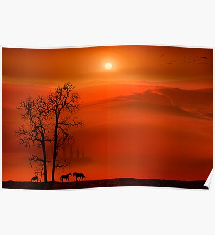 Country Sunset Poster