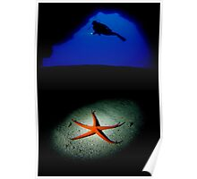 Diver and sea star Poster