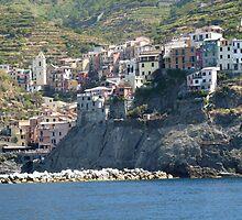 Manarola (Cinque Terre) by presbi