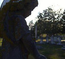 Gazing Cemetery Cherub by beresfordphotos