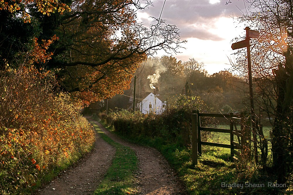 """""""Country Lane In The Late Autumn Sunlight"""" by Bradley Shawn  Rabon"""