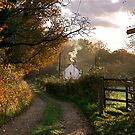 """Country Lane In The Late Autumn Sunlight"" by Bradley Shawn  Rabon"