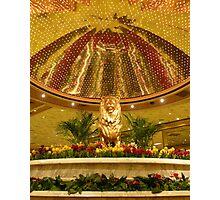Las Vegas Lion Photographic Print