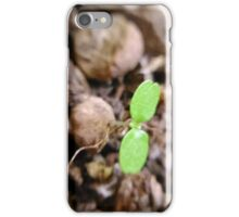 two leaves iPhone Case/Skin