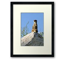 guard Framed Print