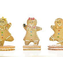 Three Gingerbread Cookies by tammykayphoto