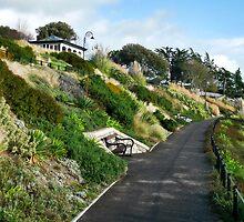 Langmoor-Lister Gardens ~ Lyme Regis by Susie Peek