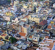 Jaipur, (the pink city), India by DareImagesArt