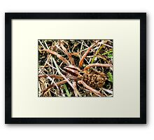 A Mother And Her Children Framed Print