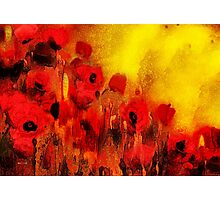 Poppy reverie'... Photographic Print