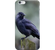 The look out post iPhone Case/Skin