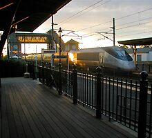 """Acela Train Now Approaching""  © 2009.NOV by Jack McCabe"